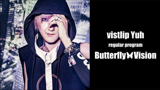 ButterflyVision